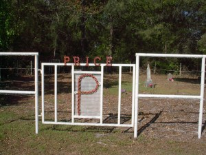 Picture of gate at Price Cemetery, Wood County, Texas